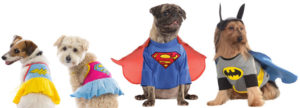 Cheap Dog Clothing Philippines Pet Lovers Closet affordable cute clothing websites